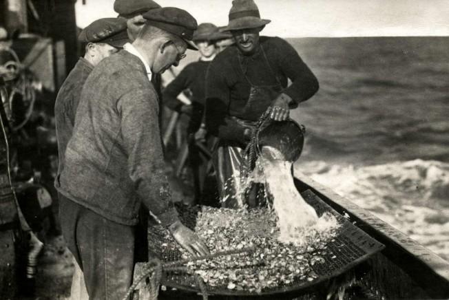 Bergingen. Gezonken schatten. Baggeren. De inhoud van de grijpers wordt op het dek uitgestort en zorgvuldig gezeefd en uitgezocht. Zit er goud bij van de Lutine? Nederland, 1924.